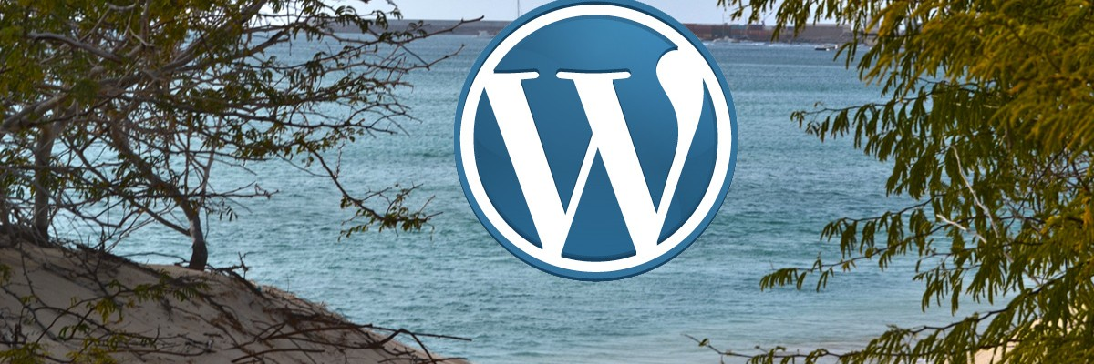 Print the first picture from a wordpress post